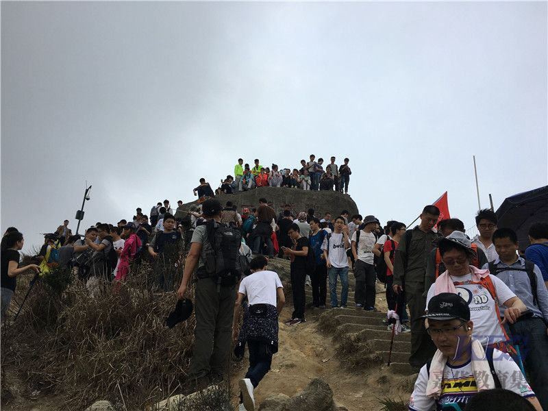 a梧桐山5