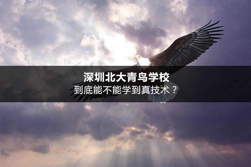 深圳北大青鸟学校到底能不能学到真技术