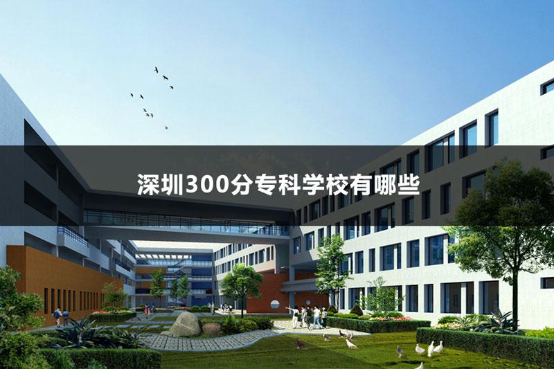 深圳300分专科学校有哪些