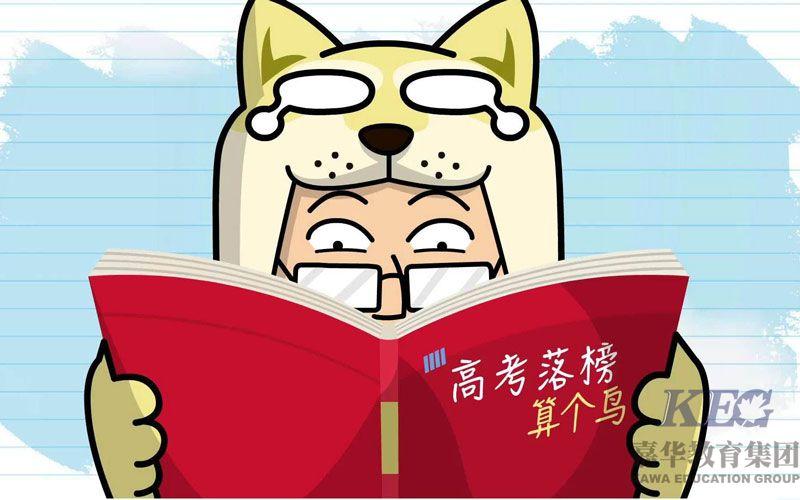 广东高考落榜读什么学校有好出路
