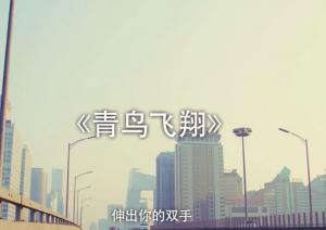 《青鸟飞翔》60秒MV版