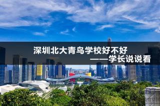 深圳北大青鸟学校好不好—学长说说看