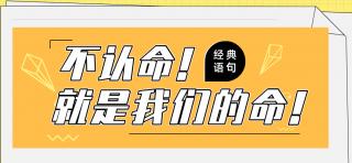 我命由我,不由天-在深圳学电子商务哪个学校比较好