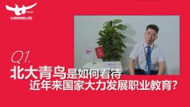 北大青鸟常务副总裁陈峰波老师专访