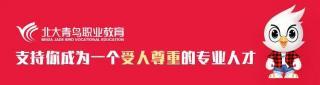 北大青鸟职业教育华中区域教学示范班会议圆满结束