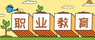 深圳北大青鸟:职业教育的起点,在中专